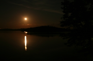 Moon on Loon